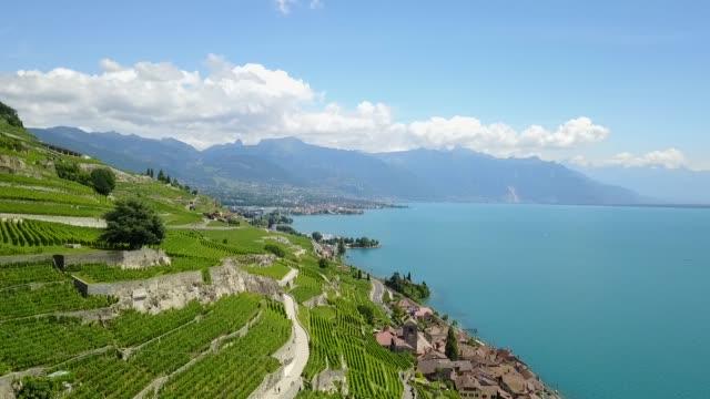 vídeos de stock e filmes b-roll de aerial over lavaux vineyards, switzerland - suíça
