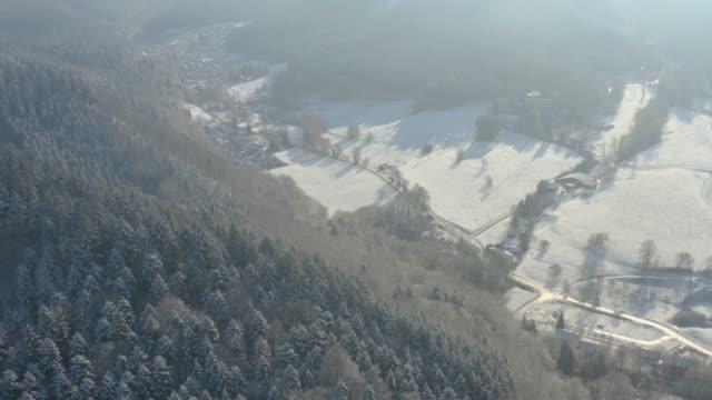 Aerial pan from Schweighof to Badenweiler video