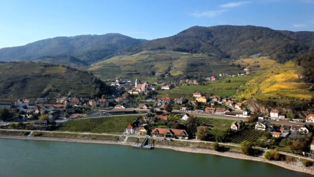 Aerial panorama of Spitz an der Donau town and vineyards. Wachau valley, Austria