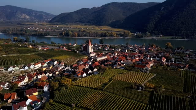 Aerial panorama of Weisenkirchen in der Wachau town and vineyards. Wachau valley, Austria