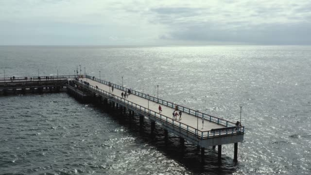 palanga, lithuania - juli 2019: luftbild ansicht der berühmten ostseeanlegestelle in palanga und meerblick. - kieferngewächse stock-videos und b-roll-filmmaterial
