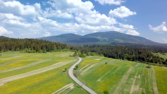 panoramische luftaufnahme des frischen frühlingslandschaft - slowakei stock-videos und b-roll-filmmaterial