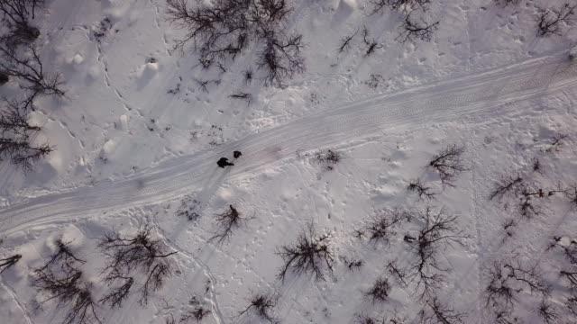 aerial människor vandrande snö landskap - norrbotten bildbanksvideor och videomaterial från bakom kulisserna