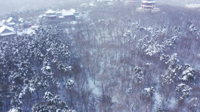 Aerial photography Jilin snow scene city forest picture