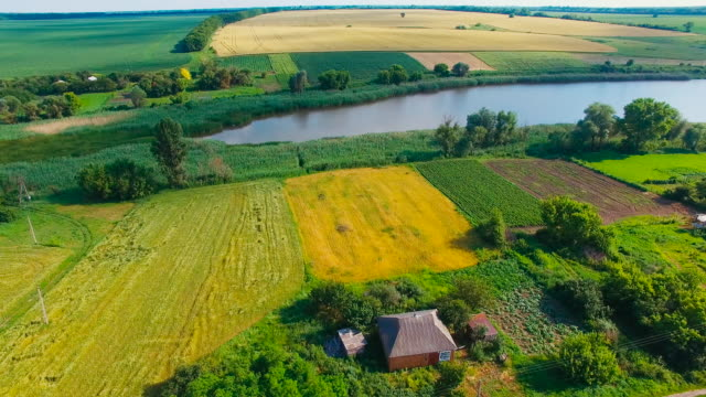 Aerial photography, lake, field, village video