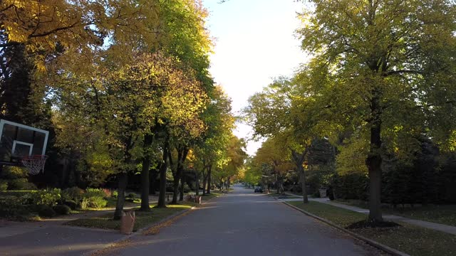 aerial bostadsområde nära north yorkin toronto - walking home sunset street bildbanksvideor och videomaterial från bakom kulisserna
