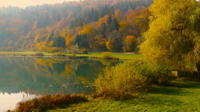 4K Aerial: Reveal Lake Shore in Fall video