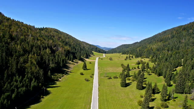 Aerial: Scenic Spruce Forest Valley With Green Field And Two Lane Road