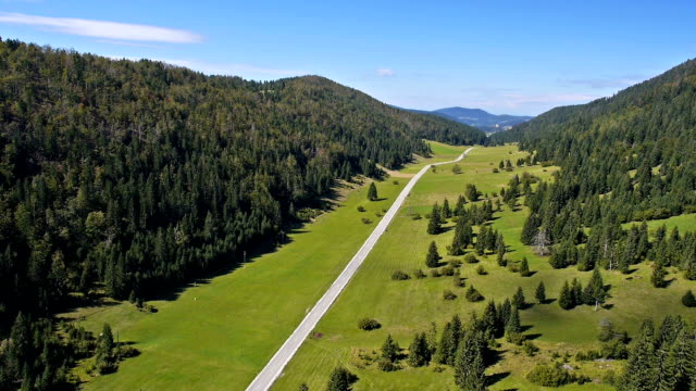 Aerial: scenic valley with green field, spruce forest and two lane road