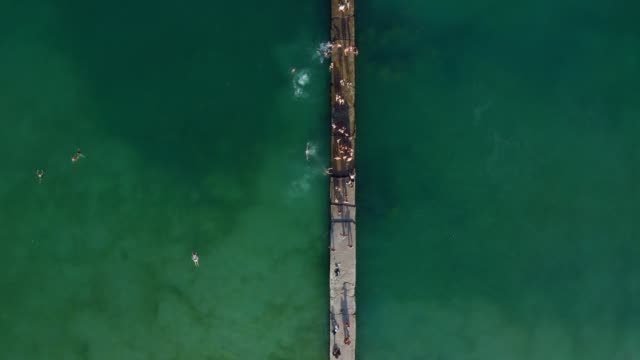 Aerial sea people swimming. summer time - video