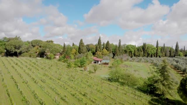 vídeos de stock e filmes b-roll de aerial shooting of a beautiful vineyard in italy, tuscany - ivy building