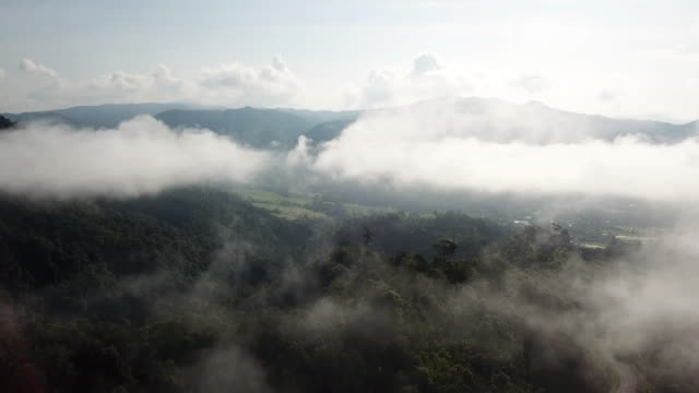 Aerial shot above the clouds and forest with sunrise and blue sky