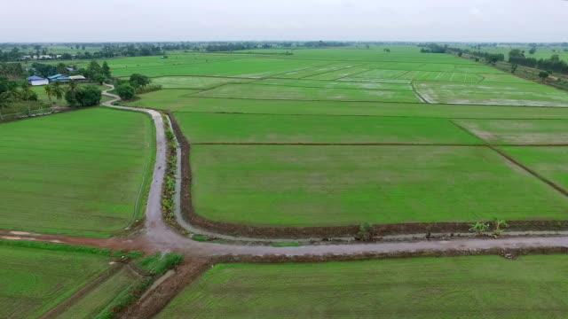 Aerial shot: Farmer spraying pesticides video
