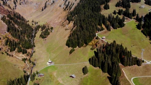 antenn skott som flyger över ett träd och gräs omfattas bergssidan i grindelwald, switzerland - grindelwald bildbanksvideor och videomaterial från bakom kulisserna