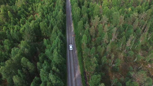 aerial skott följande bil körning på väg i pinjeskog - summer sweden bildbanksvideor och videomaterial från bakom kulisserna