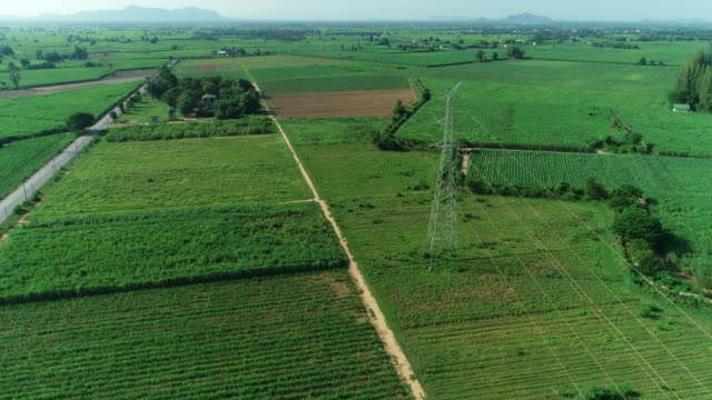 Aerial shot high voltage pole, on outdoor rice fields landscape