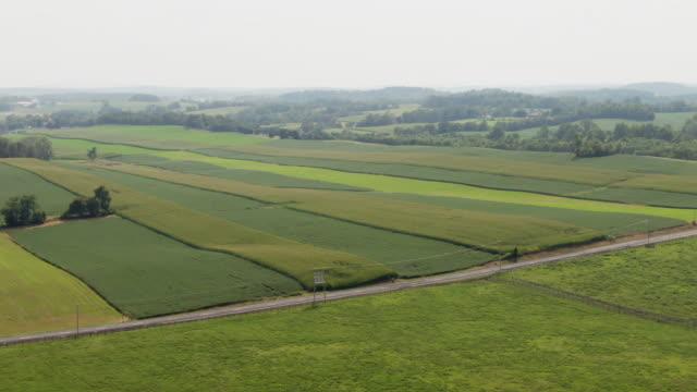 Aerial Shot of a Car Driving along a Road Cutting through Agricultural Farmland (Soybean Fields) in Maryland