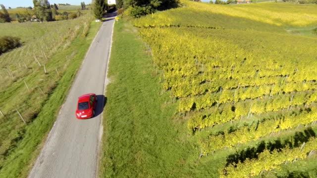 hd: veduta aerea di vigneti auto guida lungo - paesaggio collinare video stock e b–roll