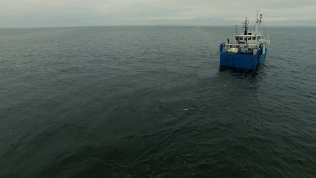 vídeos de stock, filmes e b-roll de foto aérea de um navio de pesca comercial que arrasto puxa - países bálticos