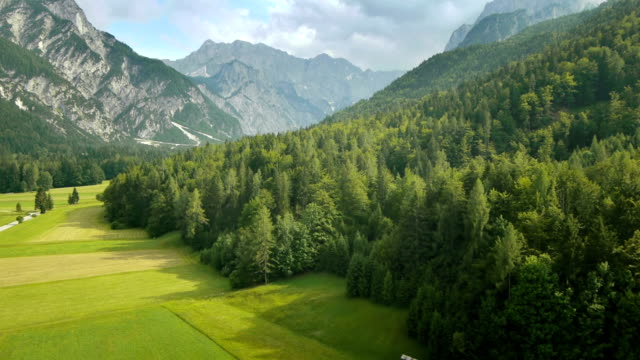 hd: aerial shot of a green valley - 全景 個影片檔及 b 捲影像
