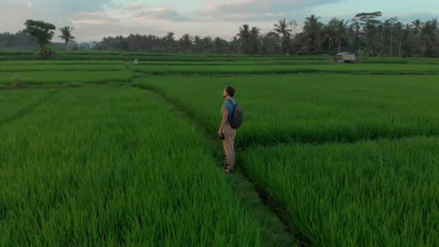 vídeos de stock, filmes e b-roll de tiro aéreo de turistas felizes da família que encontra o por do sol em um campo maravilhoso do arroz. viajar para a ásia conceito. viagem ao conceito de bali - multicóptero