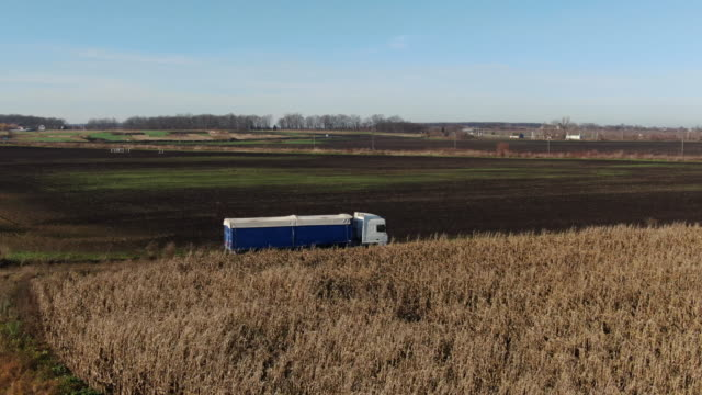 aerial shot of a truck on the road in beautiful countryside. truck moves on dirt road on corn field background. semi truck with cargo trailer attached moving through corn field background. - telecomando background video stock e b–roll