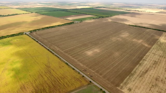 Aerial shot of a well-groomed and multicolored field, located in Eastern Europe video
