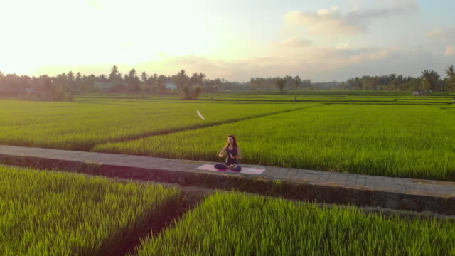 Aerial shot of a young woman practicing yoga on a big beautiful rice field during sunset. Travel to Asia concept Aerial shot of a young woman practicing yoga on a big beautiful rice field during sunset. Travel to Asia concept buddhism stock videos & royalty-free footage