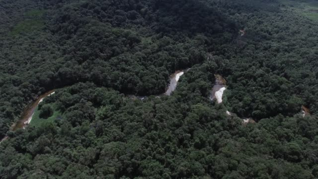 Aerial Shot of Amazon rainforest in Brazil, South America video