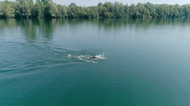 slow motion: aerial shot of athlete male training for iron man triathlon. drone shot of man swimming in lake training for triathlon race - triatleta video stock e b–roll