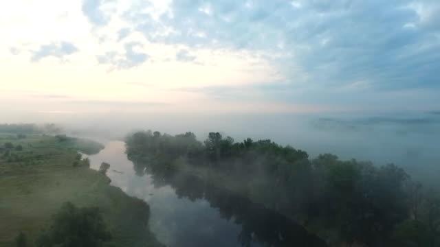 vídeos de stock, filmes e b-roll de tiro aéreo de belo ambiente rural no início da manhã. vista cênica incrível no vale e rio nebuloso ao amanhecer. voando acima de um prado largo com neblina. cena de natureza calma. câmera lenta - multicóptero