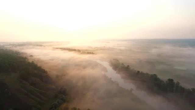 日の出時に霧で覆う美しい無限の牧草地の空中ショット。早朝の霧の多い田園地帯の素晴らしい景色。明るい太陽のイルミネーション大きな霧の谷。スローモーション - マルチコプター点の映像素材/bロール
