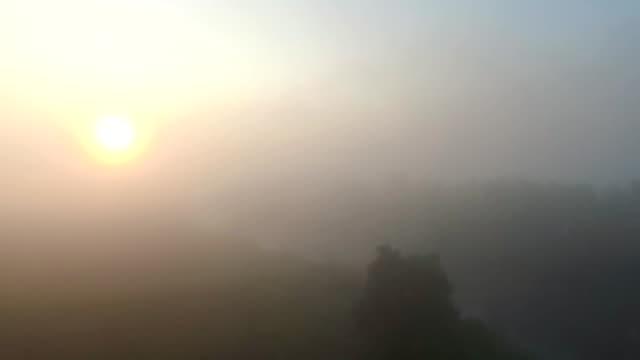 vídeos de stock, filmes e b-roll de tiro aéreo de belo ambiente enevoado do campo com o nascer do sol no início da manhã. vista cênica incrível no vale nebuloso ao amanhecer. sol nascendo acima do prado. câmera lenta - multicóptero