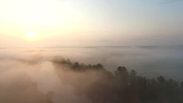 早朝の日の出と霧の美しい自然環境の空中撮影。夜明けの霧の谷の素晴らしい景色。素晴らしい田舎のシーンの上に雲の中を飛ぶ。スローモーション - マルチコプター点の映像素材/bロール
