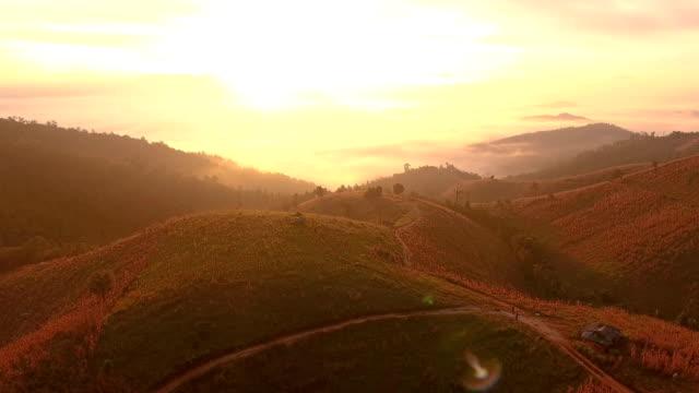 vidéos et rushes de photo aérienne de forêt tropicale magnifique lever du soleil. - vallée