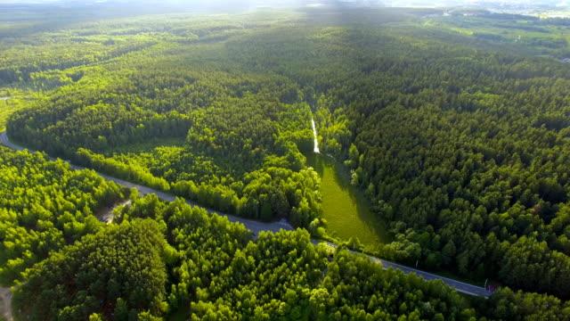 luftaufnahme von wald und see - weißrussland stock-videos und b-roll-filmmaterial