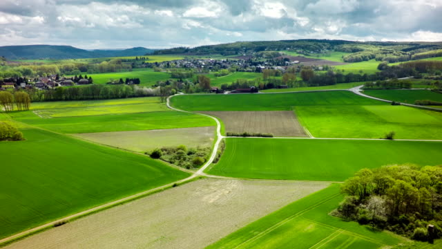 Aerial shot of green fields and pastures in rural landscape video