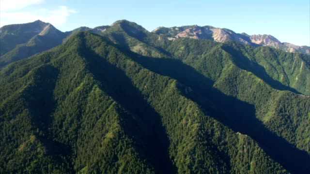 aerial shot of green forest and mountains video