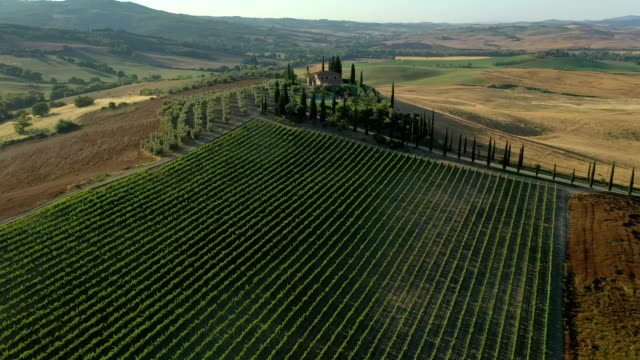 Aerial shot of hills, vineyards and fields in the countryside of Tuscany