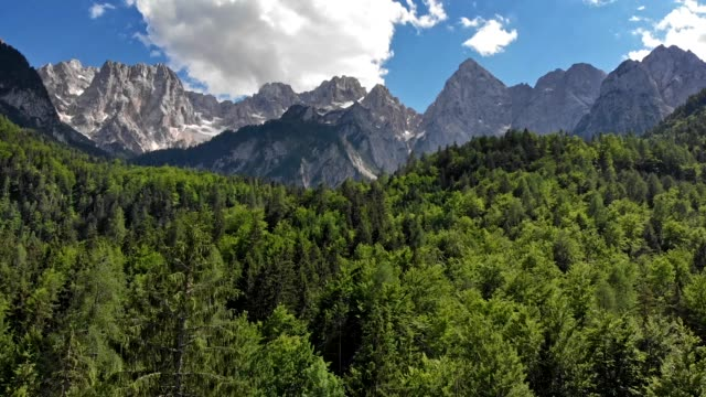 Aerial shot of Julian Alps. Pine trees and blue cloudy skies in Triglav National Park, Slovenia. 4K, UHD