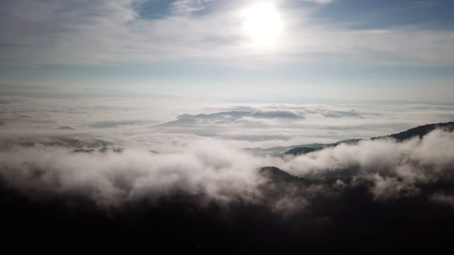 Aerial shot of mist on the mountain forest sunrise time