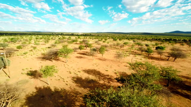 HELI Aerial Shot Of Namibian Savannah video