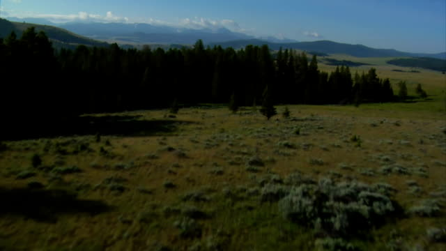 aerial shot of sagebrush pastureland with mountains video