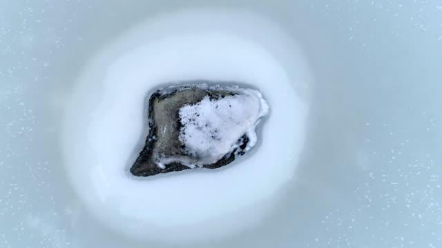 luftaufnahme von den großen felsen im meer - kiefernwäldchen stock-videos und b-roll-filmmaterial