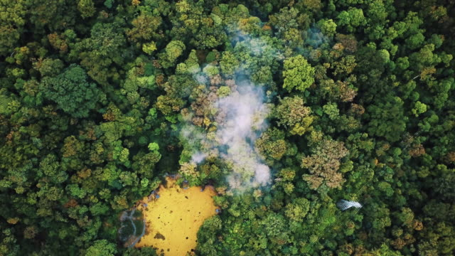 aerial shot of trees in the jungle zooming out 4k - zoom out stock videos & royalty-free footage