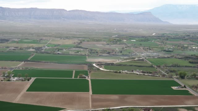 Aerial Shot of Western Colorado Agriculture The camera flies over the agricultural district of Grand Junction and Fruita, Colorado with the Bookcliffs, Mt. Garfield, and the Grand Mesa in the background and green and brown farming fields in the foreground. country geographic area stock videos & royalty-free footage