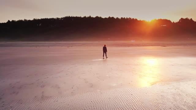 aerial shot of woman walking on remote beach at sunrise - samotność filmów i materiałów b-roll