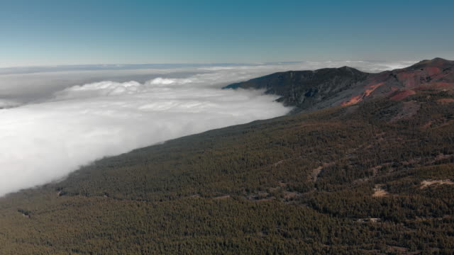 Aerial shot. Panorama alpine forest at the level of clouds. On the volcanic Canary Islands, the ground is red