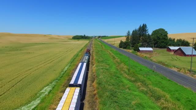 vídeos de stock, filmes e b-roll de fotos aéreas perseguindo um trem que transporta grãos está passando em campos de trigo. - transporte ferroviário