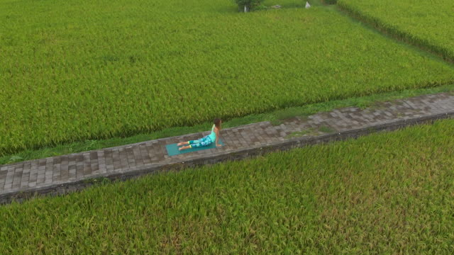 aerial slowmotion shot of a young woman practicing yoga on a beautiful rice field - mudra video stock e b–roll